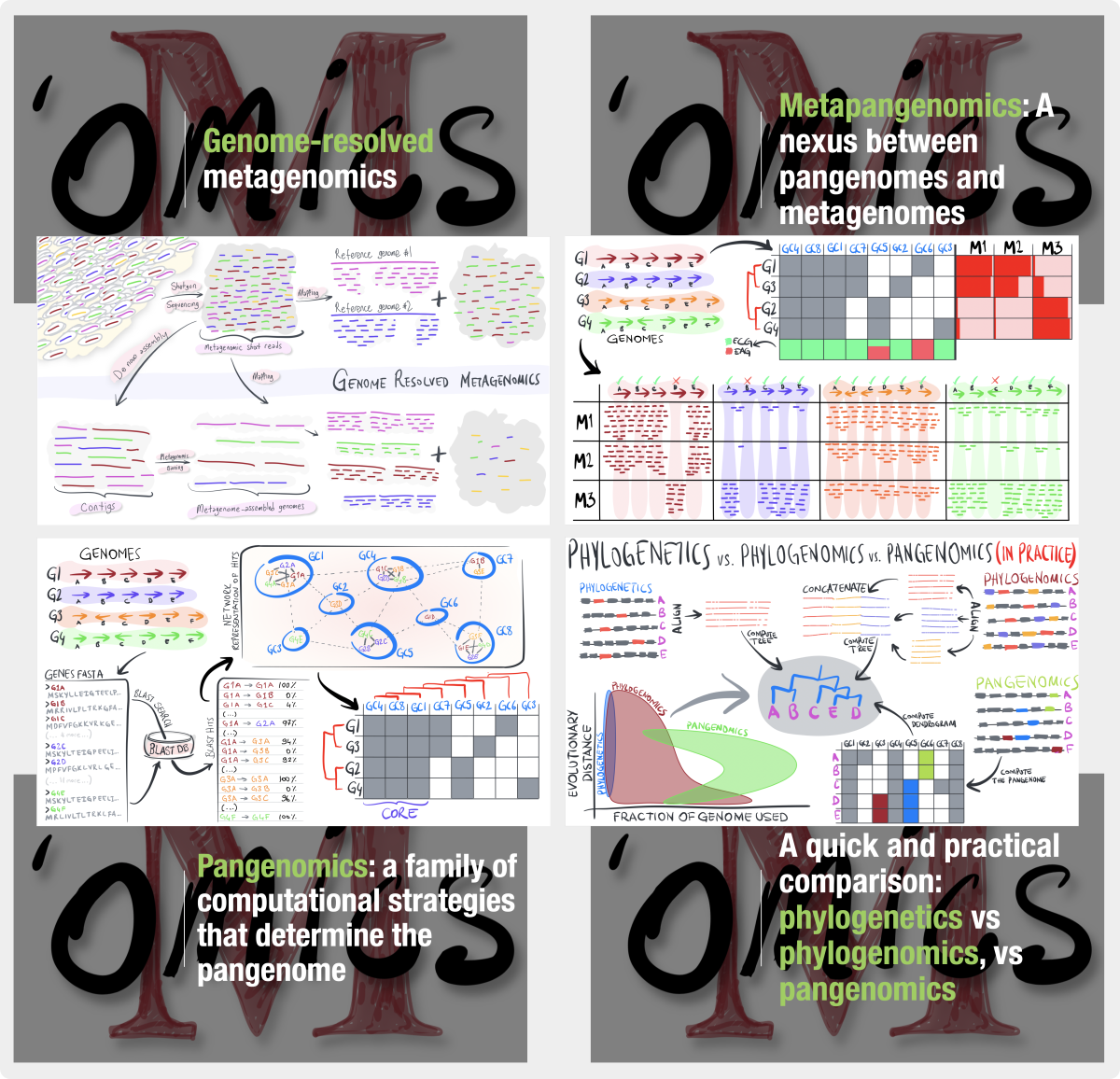 Microbial 'Omics: An introduction – Meren Lab